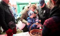 Kujawsko-Pomorski Festiwal Gęsiny w Przysieku, fot. Andrzej Goiński