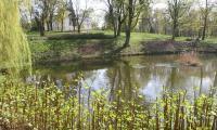Park w Lubostroniu, fot. Andrzej Goiński
