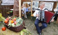 Festiwal Wisły w Toruniu, fot. Mikołaj Kuras