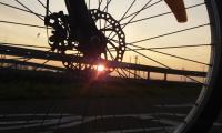Wyróżnienie - Wiktoria Redecka - Ścieżka pieszo-rowerowa w Kamieniu Kotowym