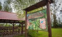 Miętowy Gaj w Brodnickim Parku Krajobrazowym, fot. Szymon Zdziebło/tarantoga.pl dla UMWKP
