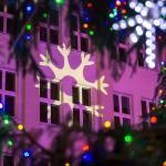 Świąteczne dekoracje w Toruniu, fot. Szymon Zdziebło www.tarantoga.pl