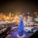 Świąteczna dekoracja przed Urzędem Marszałkowskim w Toruniu, fot. Andrzej Goiński
