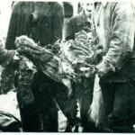Wydobywanie zwłok, Paterek 1945, Muzeum Ziemi Krajeńskiej w Nakle nad Notecią