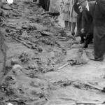 Ekshumacje w Wysokiej, 1946 r. IPN