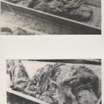 Ekshumacje w Barbarce, 1946, IPN