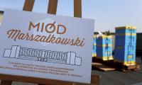 Miodobranie na dachu Urzędu Marszałkowskiego w Toruniu, fot. Mikołaj Kuras